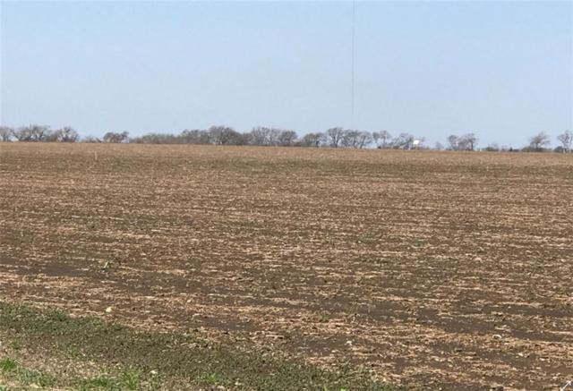 0 Mackey Ranch Rd -20 Acres, Other, TX 76524 (#2504321) :: Papasan Real Estate Team @ Keller Williams Realty