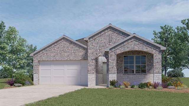 4433 Wilder Farm Ln, Georgetown, TX 78628 (#2510832) :: ORO Realty