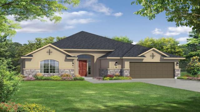 819 Founders Rdg, Dripping Springs, TX 78620 (#2522061) :: RE/MAX Capital City