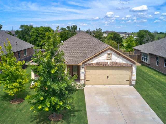 8313 Reggio St, Round Rock, TX 78665 (#2532254) :: The Gregory Group
