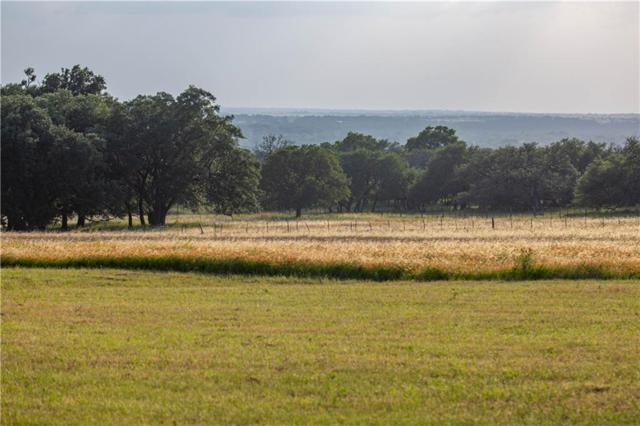 3701 County Road 207, Liberty Hill, TX 78642 (#2533018) :: The Smith Team