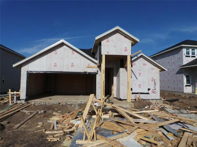 10320 Bankhead, Austin, TX 78747 (#2537906) :: The Heyl Group at Keller Williams