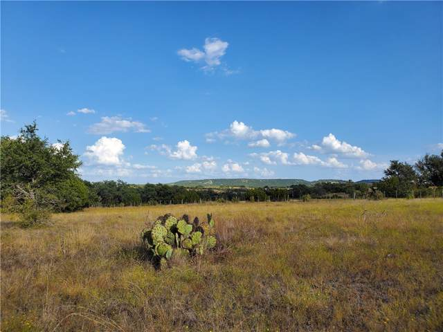 Lot 49 Hilltop Springs Ranch, Lampasas, TX 76539 (#2578041) :: The Summers Group