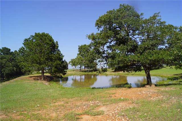 1103 Paint Creek, Paige, TX 78659 (#2584138) :: Zina & Co. Real Estate
