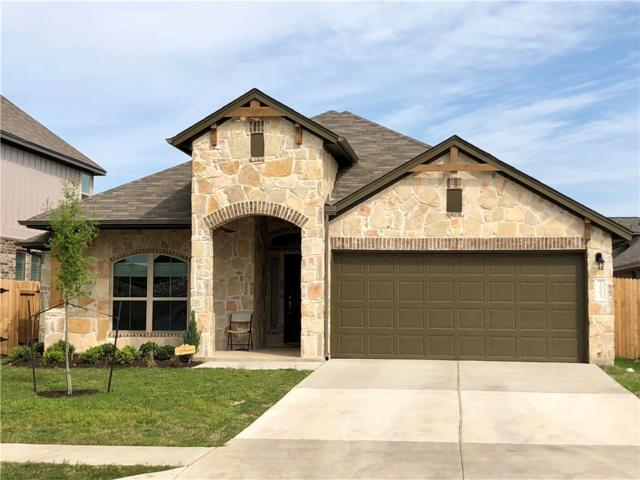 1400 Goldilocks Ln, Austin, TX 78652 (#2587863) :: Amanda Ponce Real Estate Team
