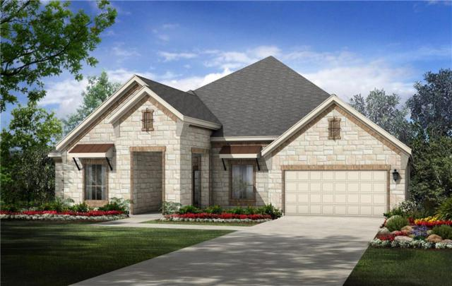 209 Callie Way, Liberty Hill, TX 78642 (#2589429) :: Ana Luxury Homes