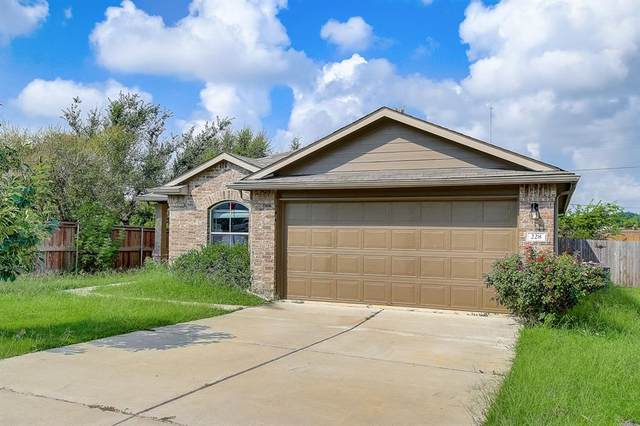 228 Avalanche Ave, Georgetown, TX 78626 (#2598705) :: Papasan Real Estate Team @ Keller Williams Realty