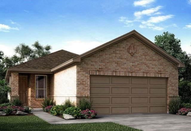 341 Serpens St, Georgetown, TX 78628 (#2613804) :: Ben Kinney Real Estate Team