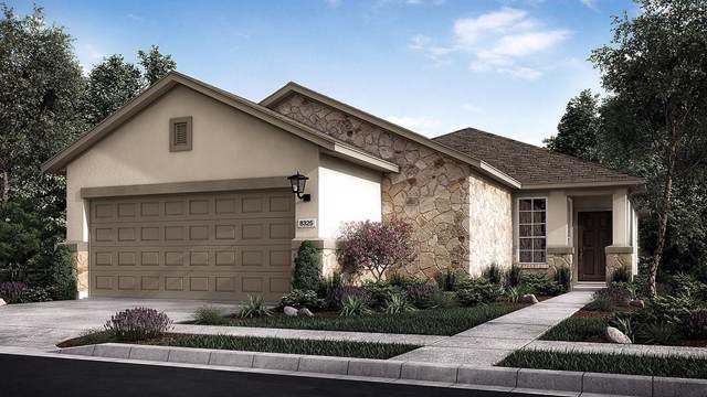 5221 Lusso Trl, Round Rock, TX 78665 (#2627921) :: Watters International