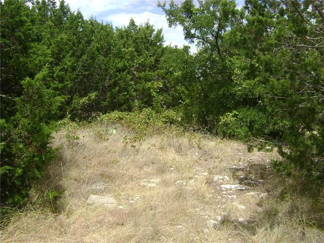 0000 County Rd 305, Burnet, TX 78611 (#2631738) :: Green City Realty