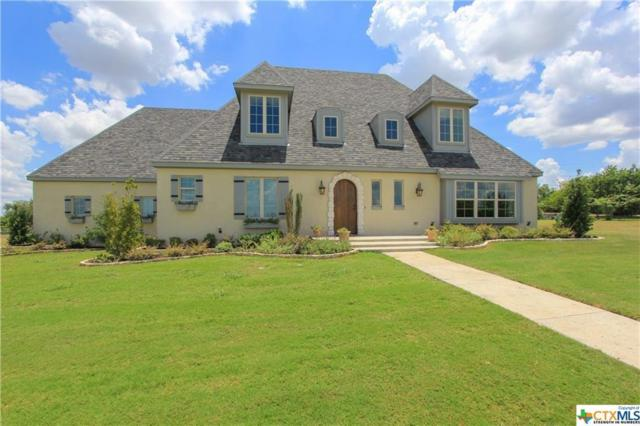 1146 Shepherd Dr, Salado, TX 76571 (#2631776) :: The Perry Henderson Group at Berkshire Hathaway Texas Realty
