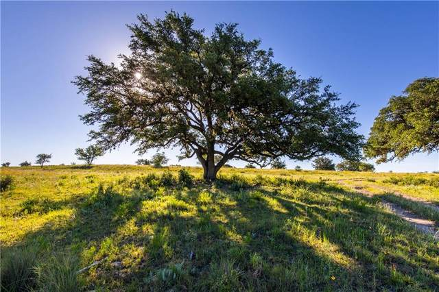 Lot 18 Stantons Ranch Rd, Johnson City, TX 78636 (#2632599) :: The Heyl Group at Keller Williams