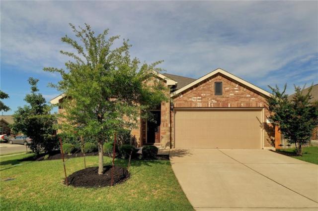 334 Briar Park Dr, Georgetown, TX 78626 (#2636154) :: Douglas Residential