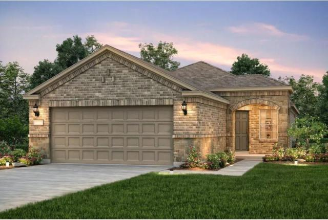 538 Rockport St, Georgetown, TX 78633 (#2637632) :: The Heyl Group at Keller Williams
