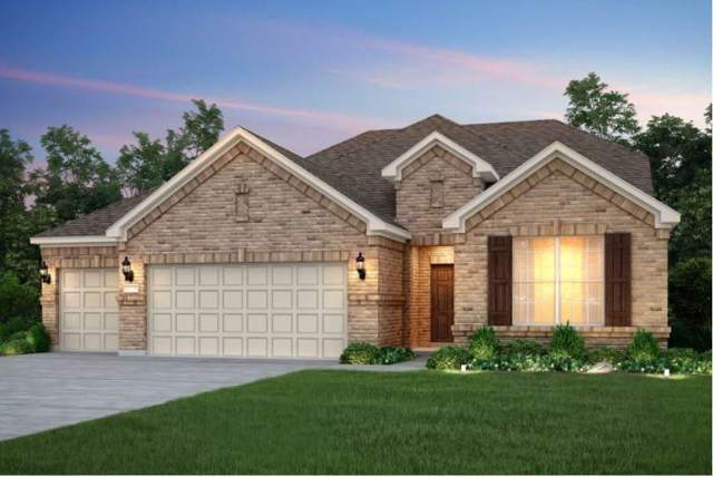 17204 Calipatria Ln, Pflugerville, TX 78660 (#2651305) :: The Heyl Group at Keller Williams