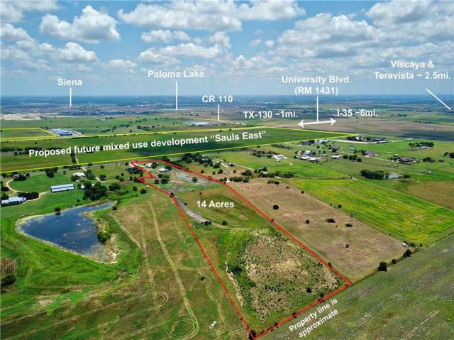 501 County Road 107, Georgetown, TX 78626 (#2652450) :: Magnolia Realty