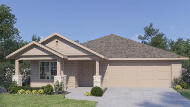 114 San Bernard Trl, Hutto, TX 78634 (#2656777) :: Amanda Ponce Real Estate Team