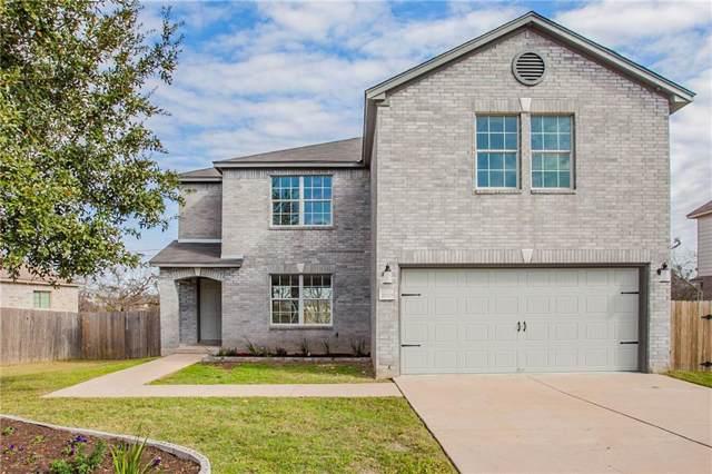 20305 Dark Tree Cv, Round Rock, TX 78664 (#2666285) :: Douglas Residential