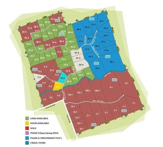 Tract 30.5 Cr 224, Briggs, TX 78608 (#2690806) :: Papasan Real Estate Team @ Keller Williams Realty