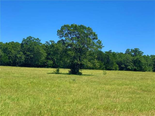 TBD Fm 2237, Flatonia, TX 78941 (#2694373) :: Lauren McCoy with David Brodsky Properties