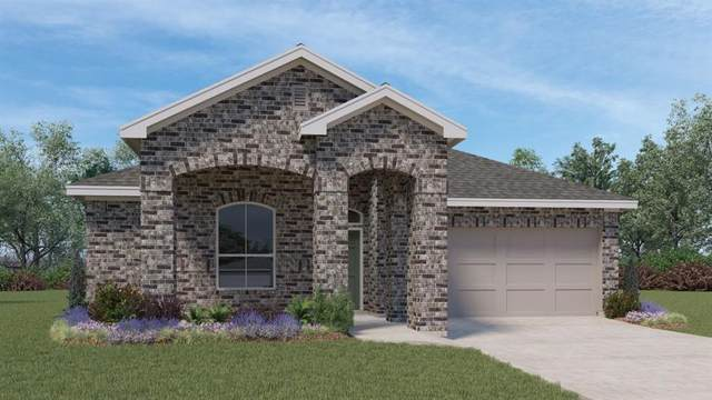 16817 Pendolino Dr, Pflugerville, TX 78660 (#2732746) :: The Heyl Group at Keller Williams
