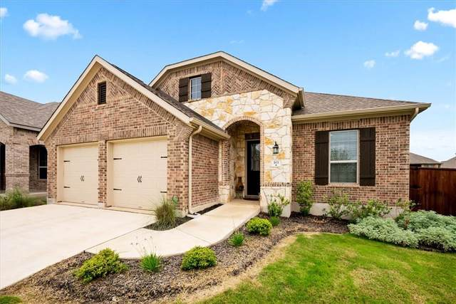 113 Lady Bug Rd, San Marcos, TX 78666 (#2734998) :: Papasan Real Estate Team @ Keller Williams Realty