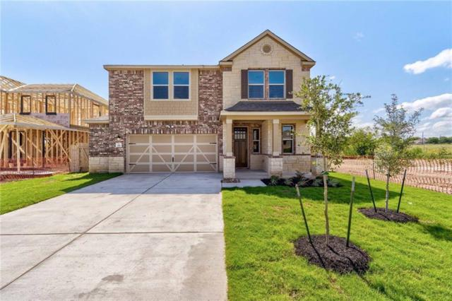 330 Maroon Ln, Kyle, TX 78640 (#2747229) :: The Perry Henderson Group at Berkshire Hathaway Texas Realty