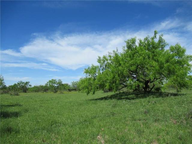 TBD County  Road 419 Rd, Brady, TX 76872 (#2756421) :: First Texas Brokerage Company