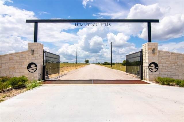 000 Estate View Cir, Lampasas, TX 76550 (#2758810) :: Papasan Real Estate Team @ Keller Williams Realty
