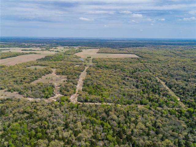 253 Private Road 342 Rd, Milano, TX 76556 (MLS #2760371) :: Vista Real Estate