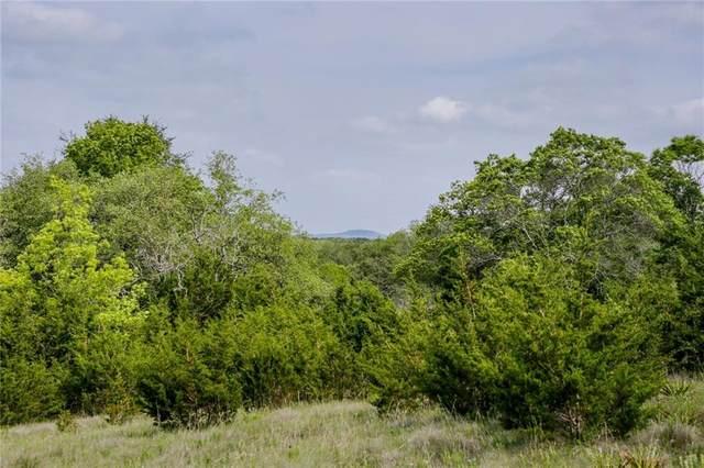 380 Sunset Ridge, Liberty Hill, TX 78642 (#2841527) :: Zina & Co. Real Estate