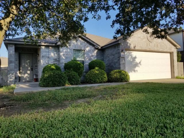 19917 Cheyenne Valley Dr, Round Rock, TX 78664 (#2845777) :: Ana Luxury Homes