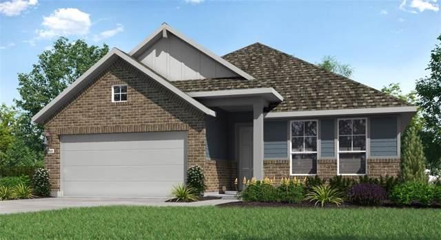16609 Sumptuous Dr, Manor, TX 78653 (#2855276) :: Lauren McCoy with David Brodsky Properties