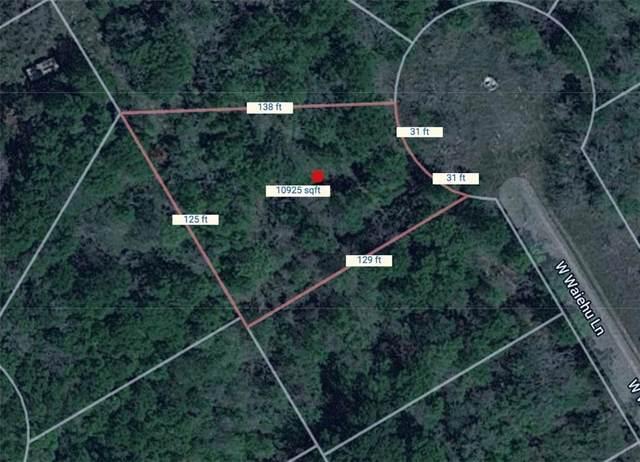 119 W Waiehu Ln, Bastrop, TX 78602 (MLS #2856877) :: Vista Real Estate