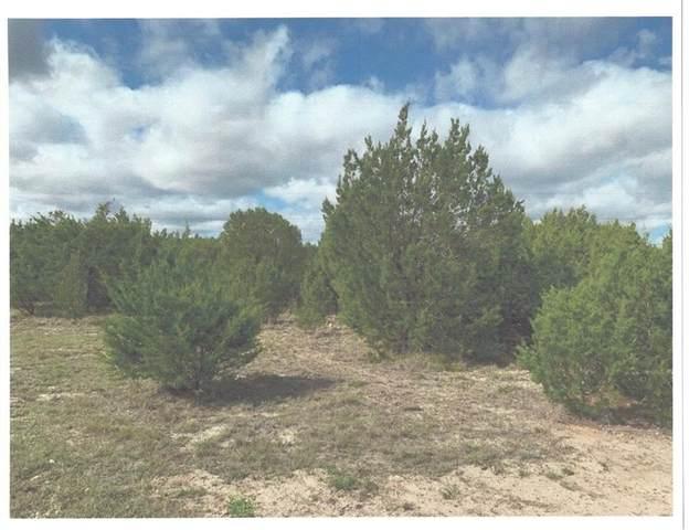 TBD Indian Mound Rd, Spicewood, TX 78669 (MLS #2862194) :: Vista Real Estate
