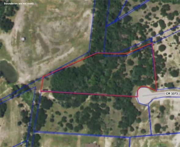 196 County Road 3373, Kempner, TX 76539 (#2902317) :: Papasan Real Estate Team @ Keller Williams Realty