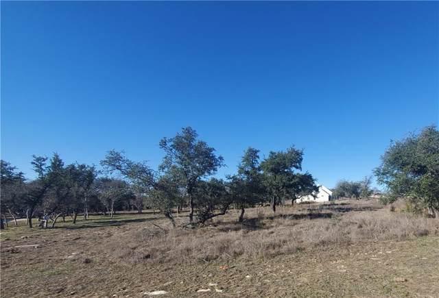 220 San Gabriel Hideaway Cv, Liberty Hill, TX 78642 (#2908639) :: Papasan Real Estate Team @ Keller Williams Realty