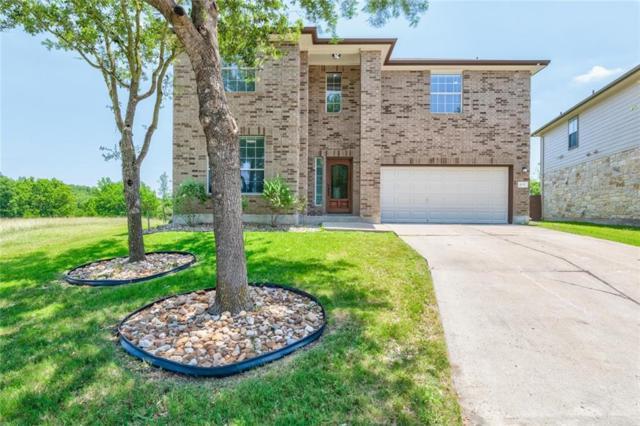 4100 Veiled Falls Dr, Pflugerville, TX 78660 (#2911987) :: Douglas Residential