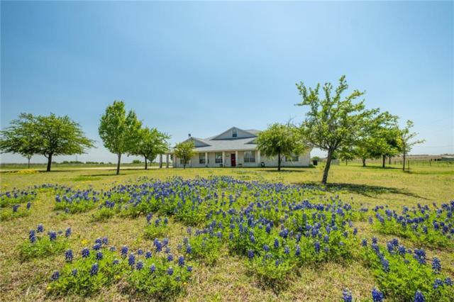 5109 Gate Dancer Ln, Pflugerville, TX 78660 (#2914316) :: RE/MAX Capital City