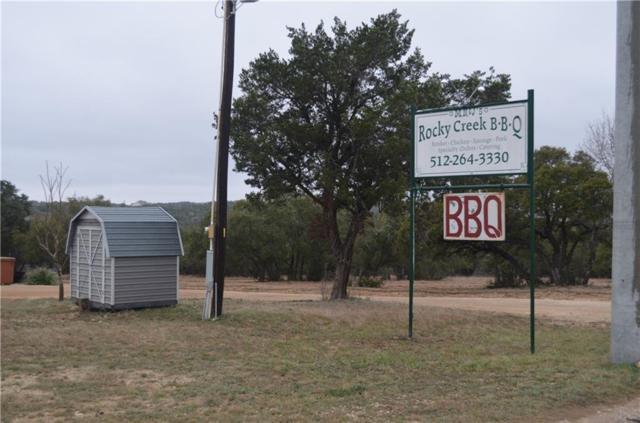 17499 Hamilton Pool Rd, Austin, TX 78738 (#2918573) :: The ZinaSells Group