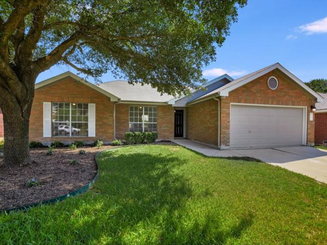 1007 Terra St, Round Rock, TX 78665 (#2919242) :: The Perry Henderson Group at Berkshire Hathaway Texas Realty