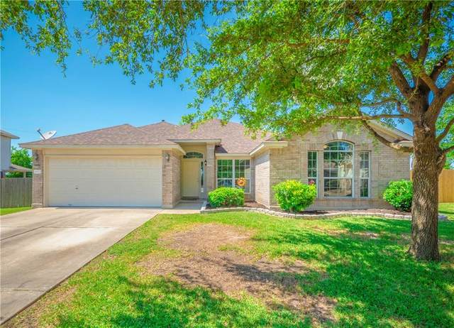 17909 Quitman Mountain Way, Round Rock, TX 78664 (#2924533) :: RE/MAX Capital City