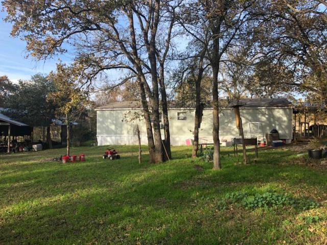 116 Stephanie Ln, Red Rock, TX 78662 (#2926108) :: Papasan Real Estate Team @ Keller Williams Realty