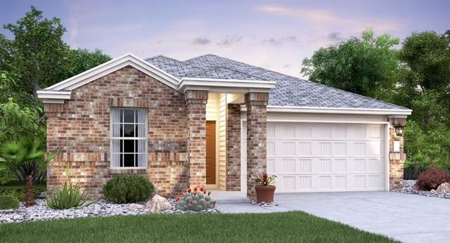 6509 Leonardo Cove, Round Rock, TX 78665 (#2934598) :: The Perry Henderson Group at Berkshire Hathaway Texas Realty