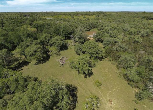 000 Mt. Pleasant Rd., Cedar Creek, TX 78612 (#2950418) :: The Heyl Group at Keller Williams