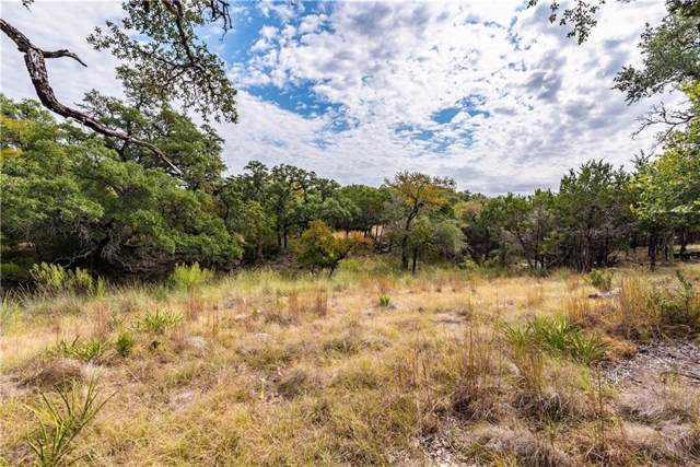 581 Miss Donna Ln, Dripping Springs, TX 78620 (#2953081) :: Papasan Real Estate Team @ Keller Williams Realty