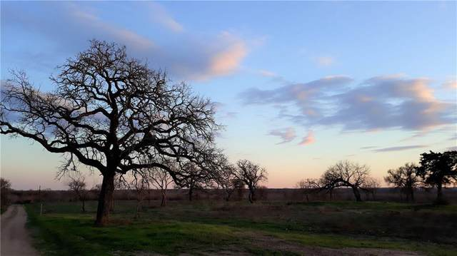 Tract 2 Hershal Ln, Cedar Creek, TX 78612 (#2972569) :: The Heyl Group at Keller Williams