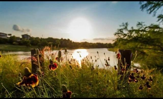 10202 Thomas Ln, Dripping Springs, TX 78620 (#2982295) :: Papasan Real Estate Team @ Keller Williams Realty