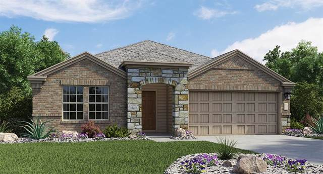 113 Balsam Way, Hutto, TX 78634 (#2995118) :: The Perry Henderson Group at Berkshire Hathaway Texas Realty