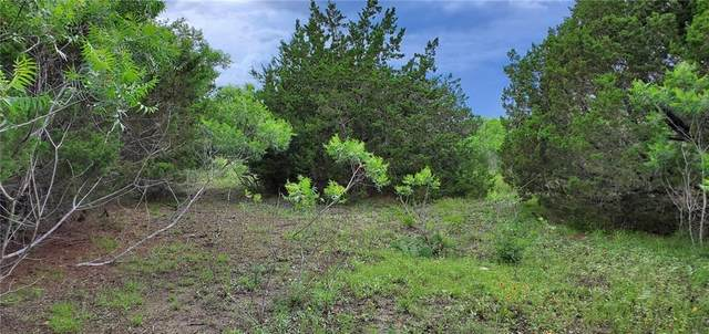 Lot 49 Avila Ln, Briggs, TX 78608 (MLS #2998592) :: Brautigan Realty